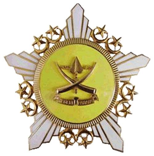 徽章定制金徽章